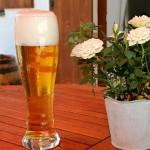 Bier und Blumen